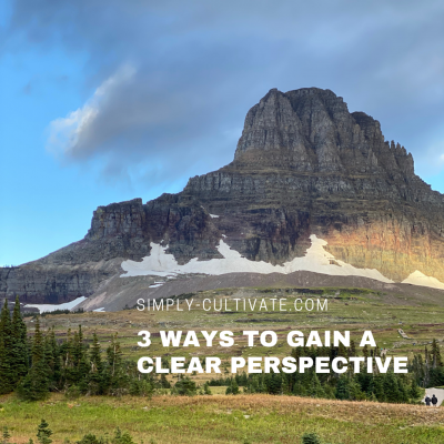 Cultivate Change: 3 Ways to Gain a Clear Perspective